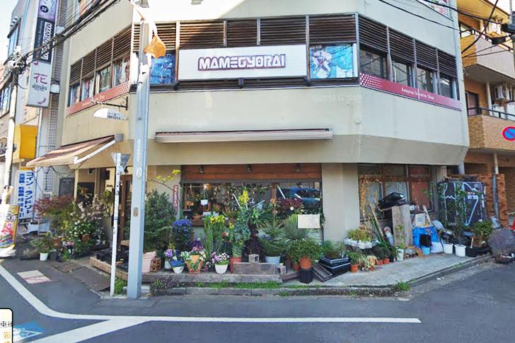 「豆魚雷 高円寺」店の外観