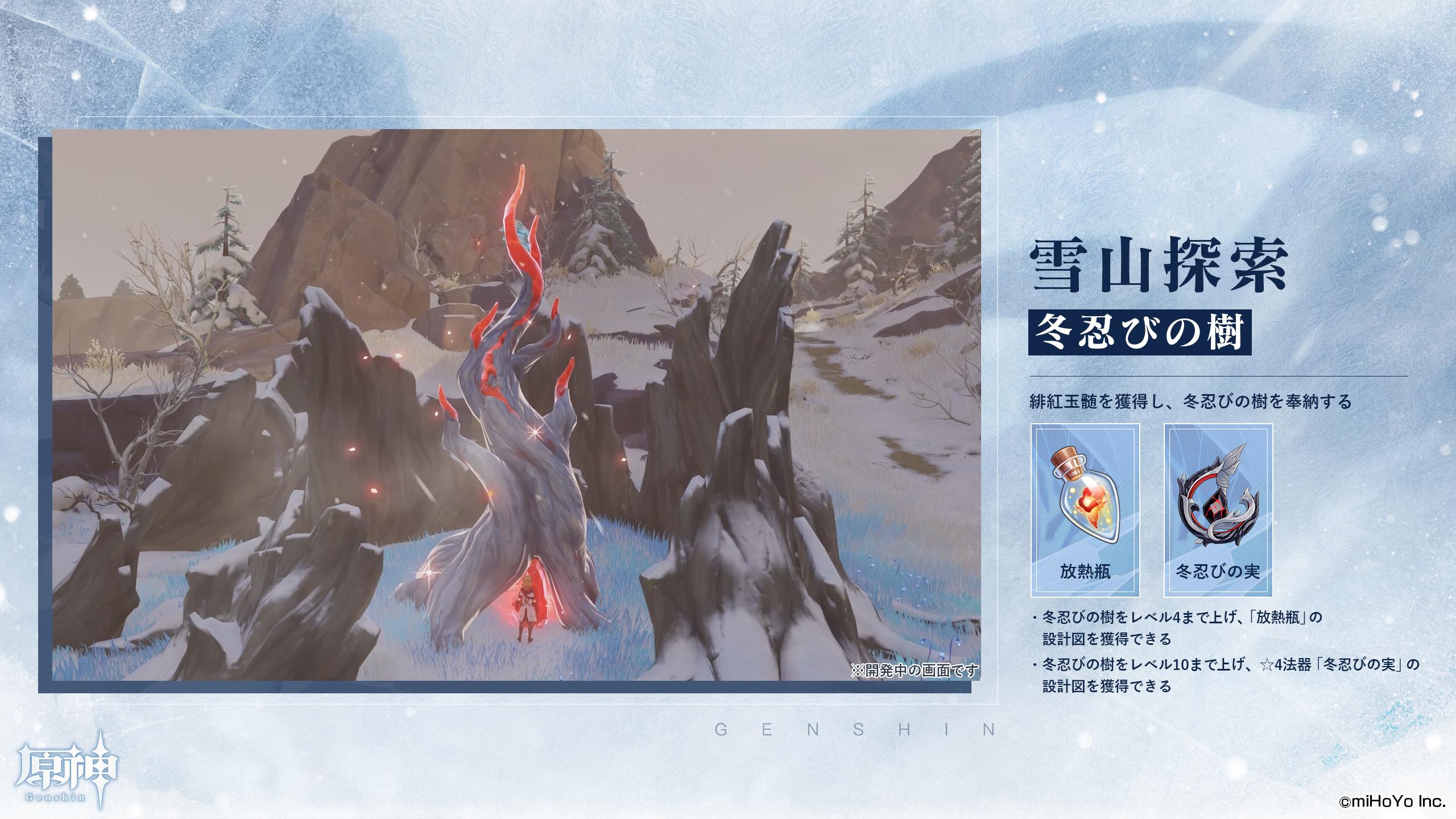 【雪山探索 冬忍びの樹】 放熱瓶/冬忍びの実
