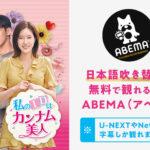 【韓国ドラマ】私のIDはカンナム美人の日本語吹き替えが無料で観れるのはABEMA(アベマ)!U-NEXTやNetflixは?